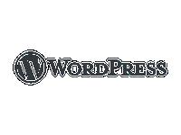 WordPress julkaisujärjestelmä